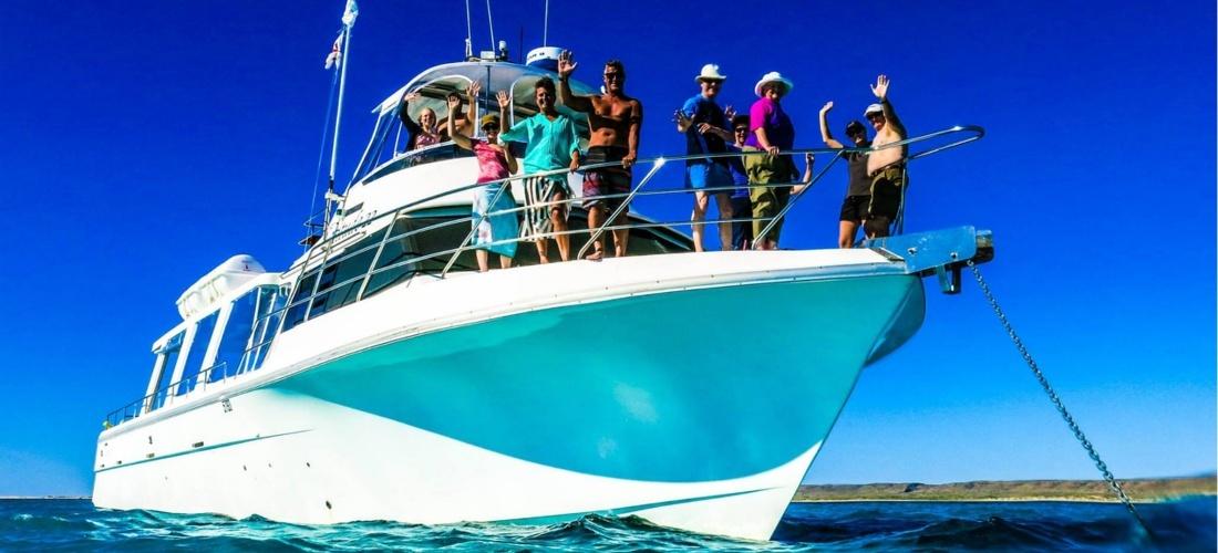 case-study-how-ocean-eco-adventures-increased-online-bookings-one-simple-decision.jpg
