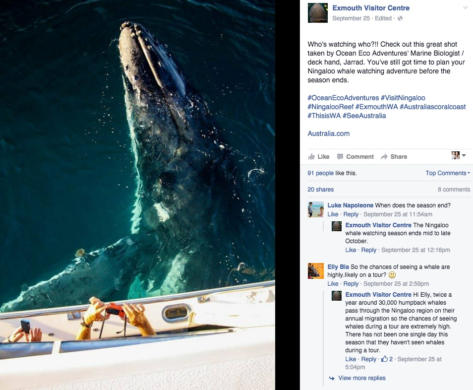 ocean_eco_adventures_facebook.jpg